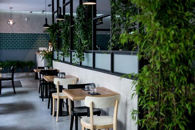7 новых кафе иресторанов современной азиатской кухни в Петербурге
