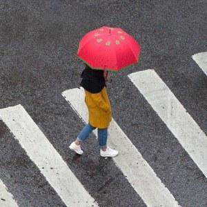 9 цветных зонтов