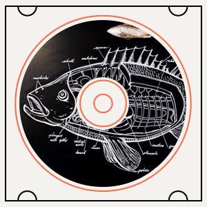 Какая музыка играет врыбном ресторане Boston Seafood&Bar