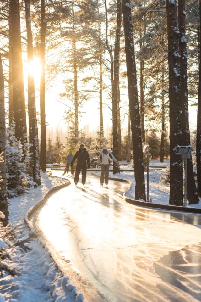 На курорте «Охта Парк» в Ленобласти 28 ноября откроют лесной каток