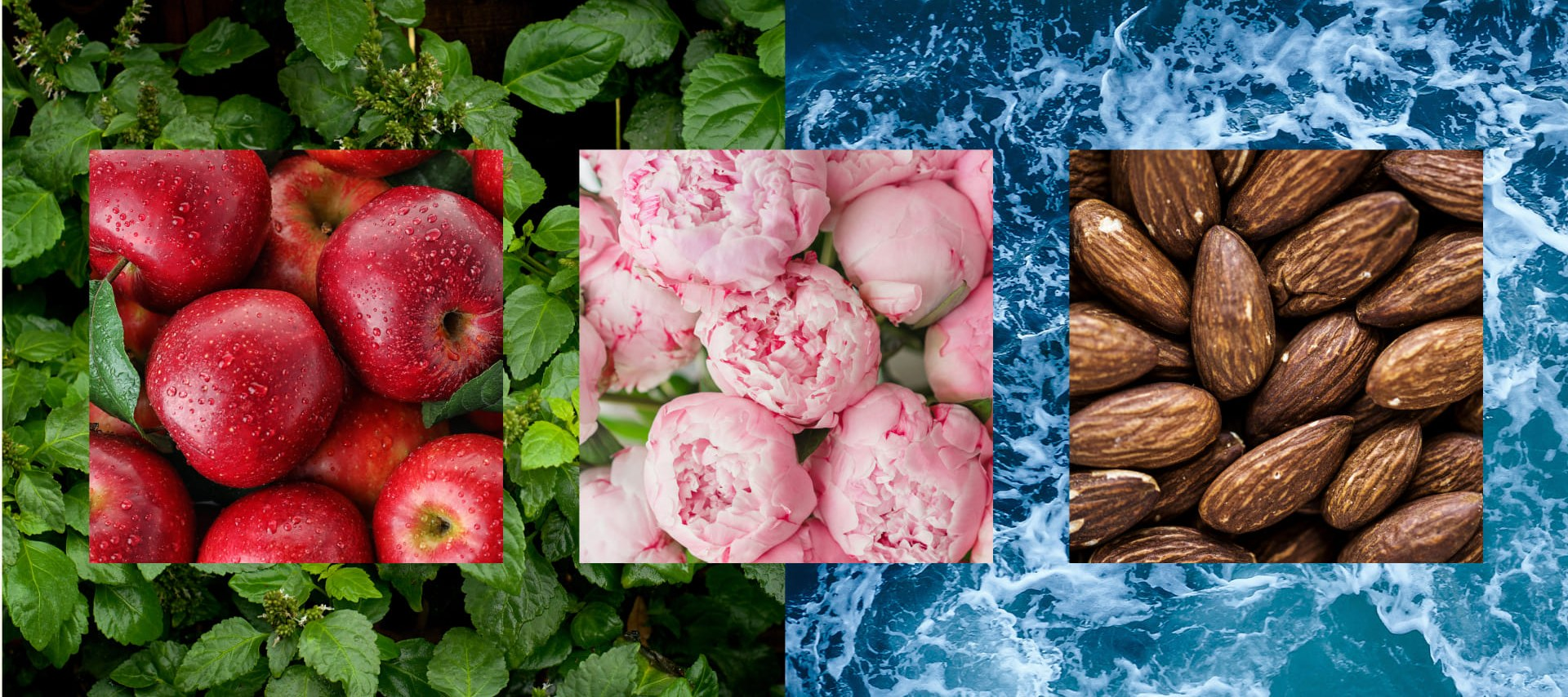Какими ароматами наполнить дом