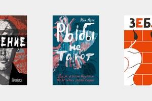 Смелая литература Нидерландов иФландрии: 5отличных книг для детей иродителей