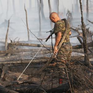 Как тушат лесные пожары вТверской области
