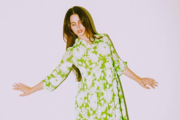 Недостоверные данные осчастье: Как Лана Дель Рей стала последним панком впоп-музыке