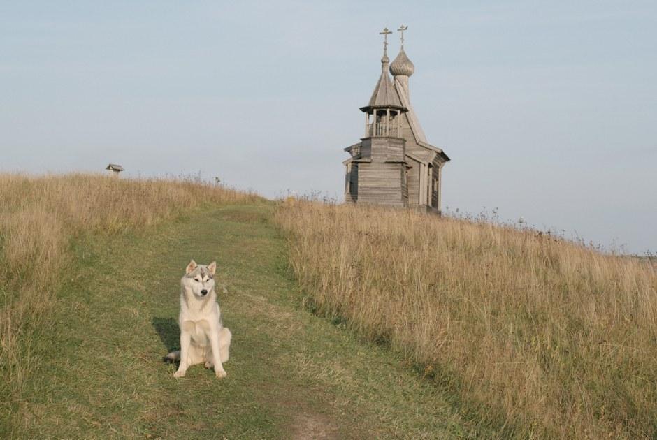 Гидпосамым красивым деревням Архангельской области