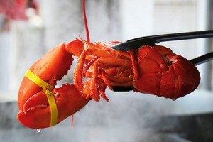 Какие продукты исчезают измосковских ресторанов