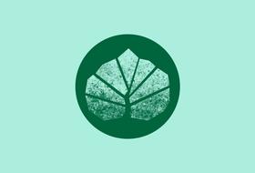 «Логотип будет красивый-красивый и понравится всем социальным группам»