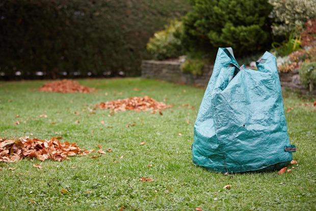 Надоли убирать листву сгазонов?