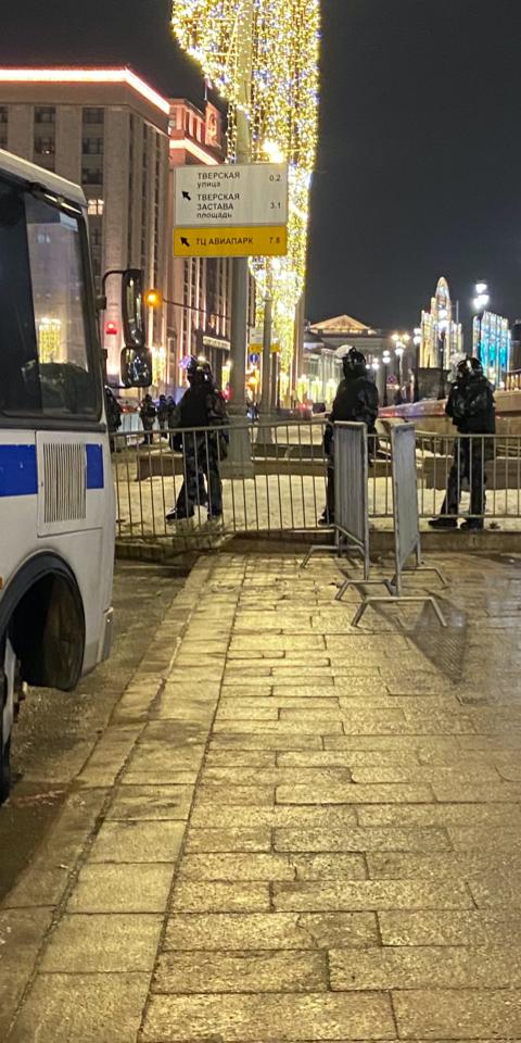 Спецкор The Village Алена Дергачева оказалась взаперти среди ограждений на Манежной площади