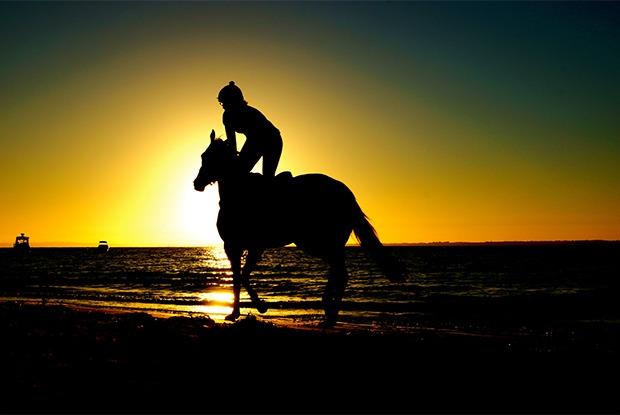 Сысертские поля и березовские пески: 10 мест для прогулки на лошадях в окрестностях Екатеринбурга