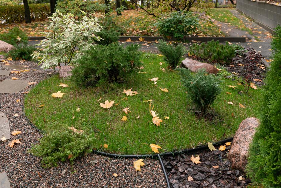 Как в петербургском «спальнике» сделали ландшафтный сад вместо бабушкиного огорода