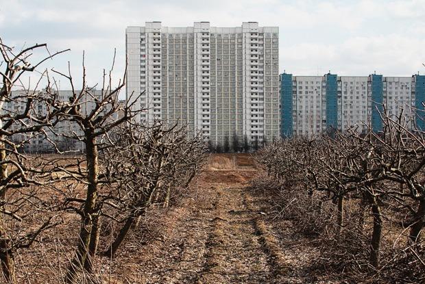 Почему отбирают земли уТимирязевской академии