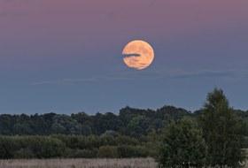 Где смотреть великое противостояние Марса иполное затмение Луны