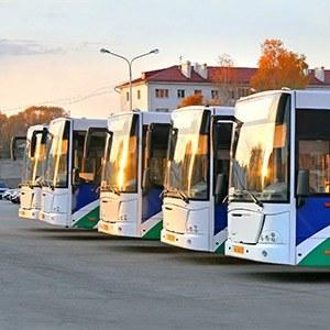 Как помочь россиянам дождаться автобуса