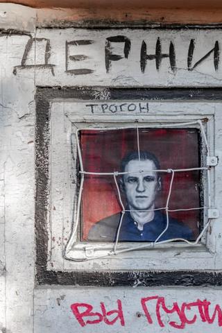 Граффити с Навальным в клетке, которую можно открыть