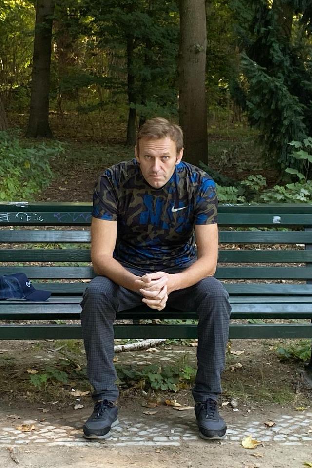 «Ярновости»: Навальный будет отбывать наказание во Владимирской области