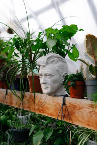 Кашпо с головами знаменитостей для уральского фестиваля домашних растений House Plant