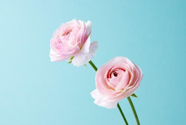 Сколько на самом деле стоит букет цветов