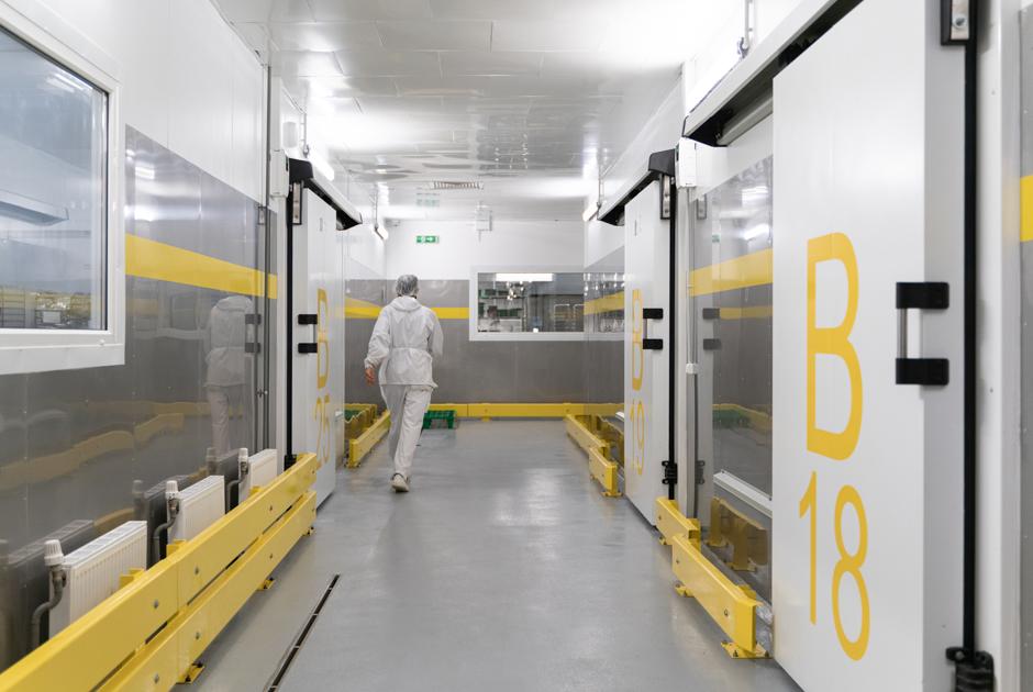 Как устроен завод готовой еды «Яндекс.Лавки» вПетербурге