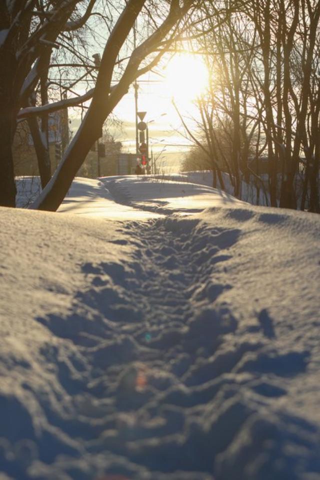 ВМоскву придут суровые морозы. Зато будет солнце!