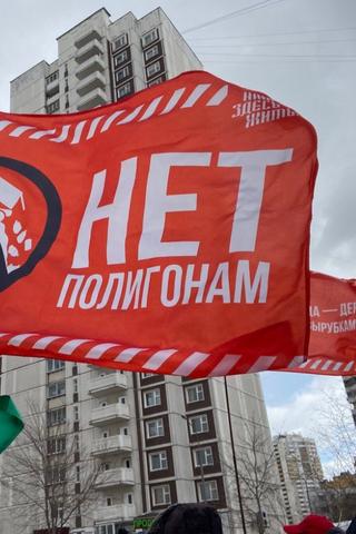 Какие проблемы экологии волнуют россиян во время пандемии