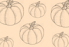 Сезон молодых овощей: Тыква