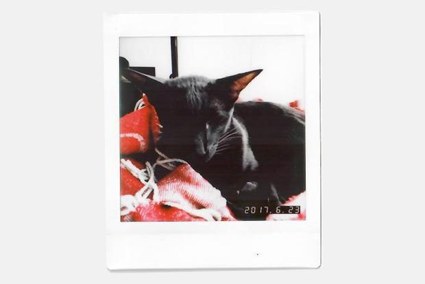 Моментальная камера Instax Square с функцией редактирования снимков
