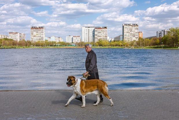 Урбанист Пётр Иванов— отом, различаются ли жители Патриарших и«Фигифино»