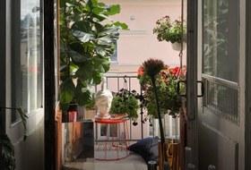 Москвичи — о своих балконах икарантинных развлечениях