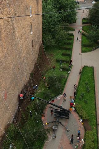 Жители Петроградской стороны восстановили «зеленую стену» извьющегося винограда