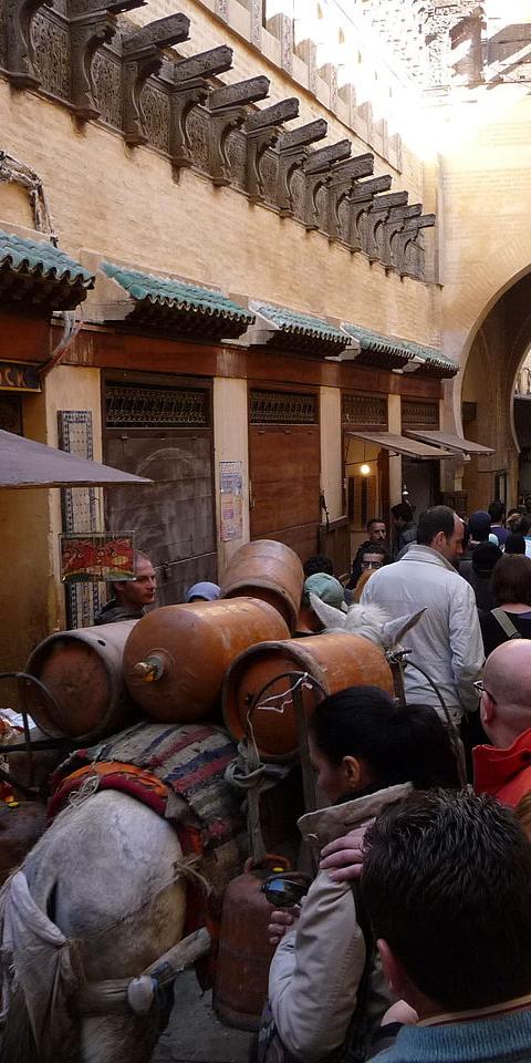 Россияне смогут въехать вМарокко ссертификатом овакцинации или отрицательным ПЦР-тестом