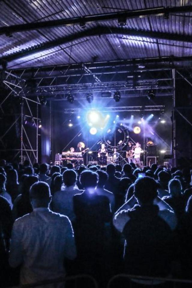 Новогодние концерты «Аптекарского огорода» пройдут вавтомузее