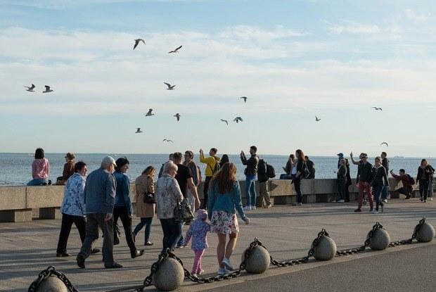 Петербург — город-курорт: Три променада с видом наморе
