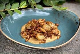 Паста, хумус, равиоли исалат: Как готовить лисички