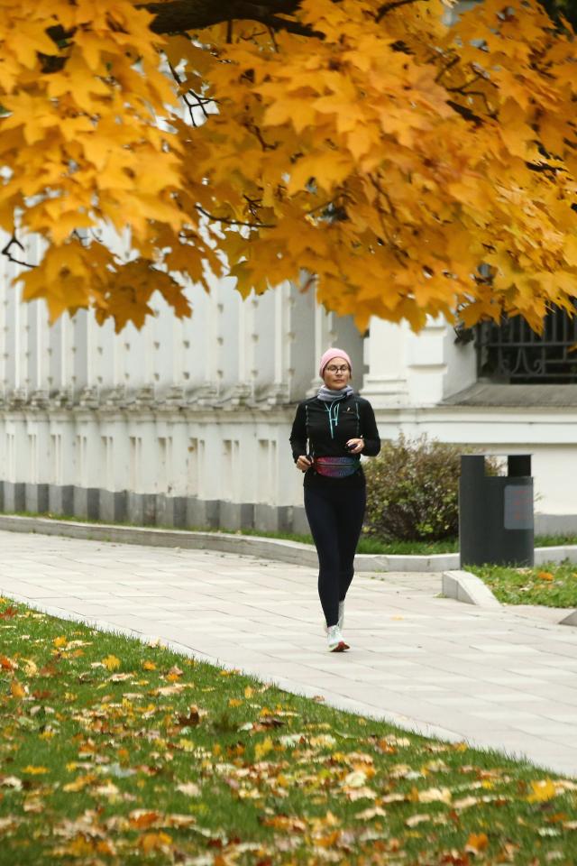 ВМоскву скоро придет «золотая осень». Время для прогулок погороду!