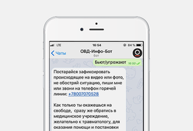 Телеграм-бот, который поможет при задержании намитинге