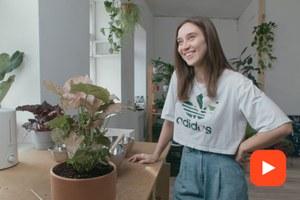 Какработает студия Plant Me, где растения находят своих хозяев