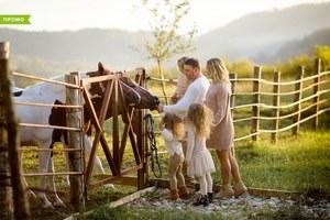 12 причин разобраться, что такое агротуризм и посетить ферму «Экзархо»