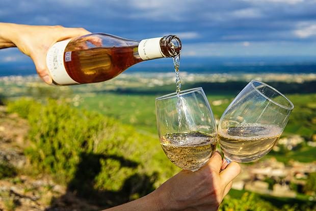 Как подобрать вино к шашлыкам, барбекю или бургеру