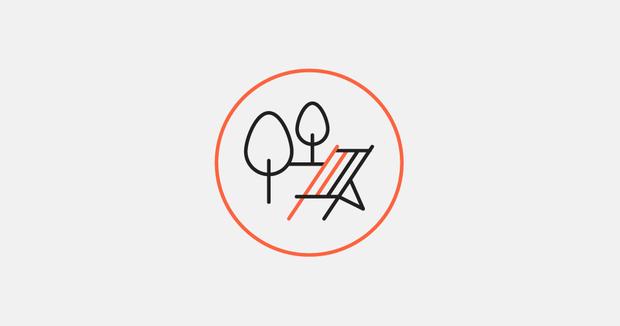 «Вытоптанный» логотип Зеленой рощи от дизайнера Романа Дика