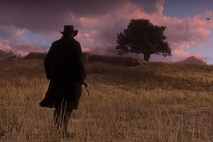 Изчего состоит Red Dead Redemption2