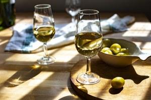 Как заказывать в баре, выбирать вмагазине и дегустировать: Все, что вам нужно знать про вино