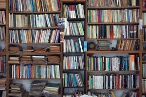 «Когда Лужков был мэром, хорошо шла литература помеду»: Чем живут московские букинистические