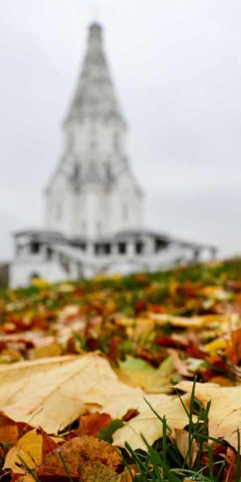 Вевропейской части России осень начнется с«бабьего лета»