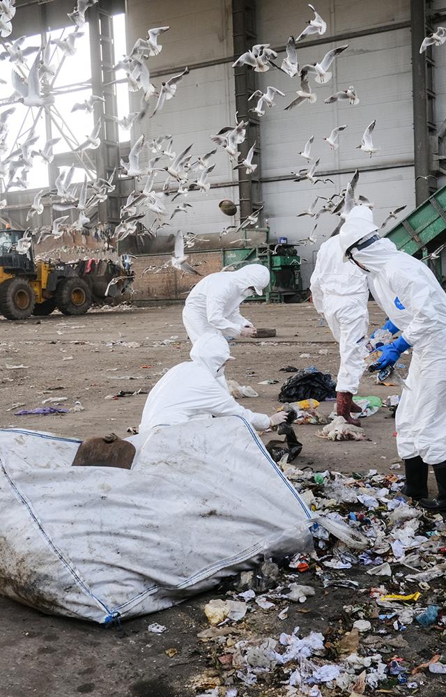 Как устроен мусоросортировочный завод под Дзержинском?
