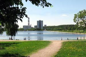 Огни моего гетто: Жители Гольянова освоём районе