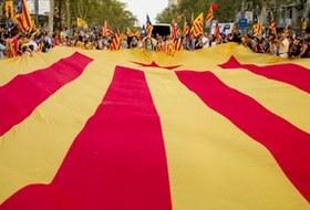 Как у них: Жители Гамбурга, Барселоны, Харькова, Рима иВиндхука о Дне города