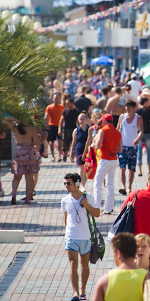 С начала года Сочи посетили 5,5 миллионов туристов