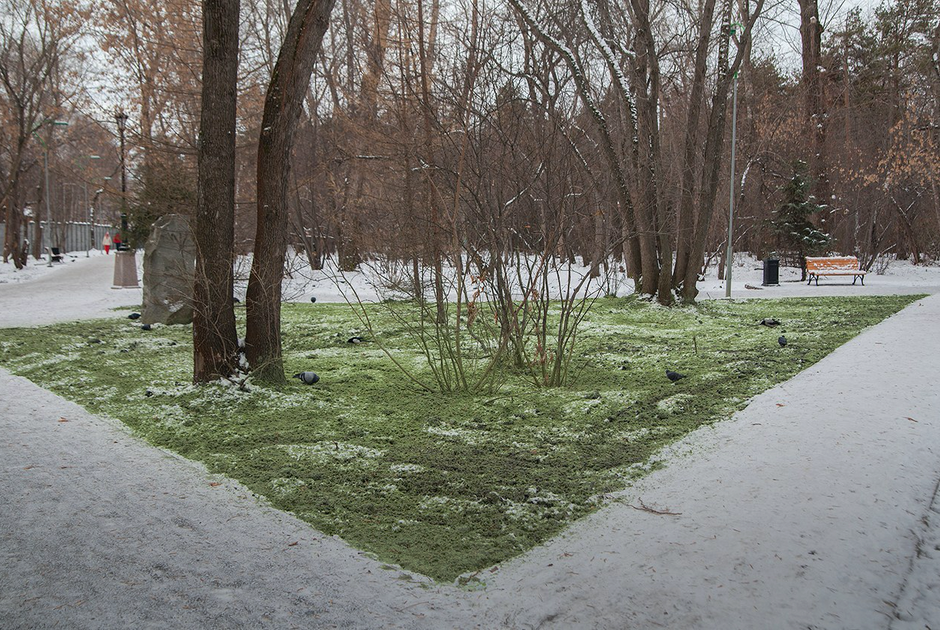 Какизменился парк «Зеленая роща» после реконструкции
