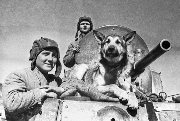 Музей памяти: Где искать факты и истории о войне онлайн